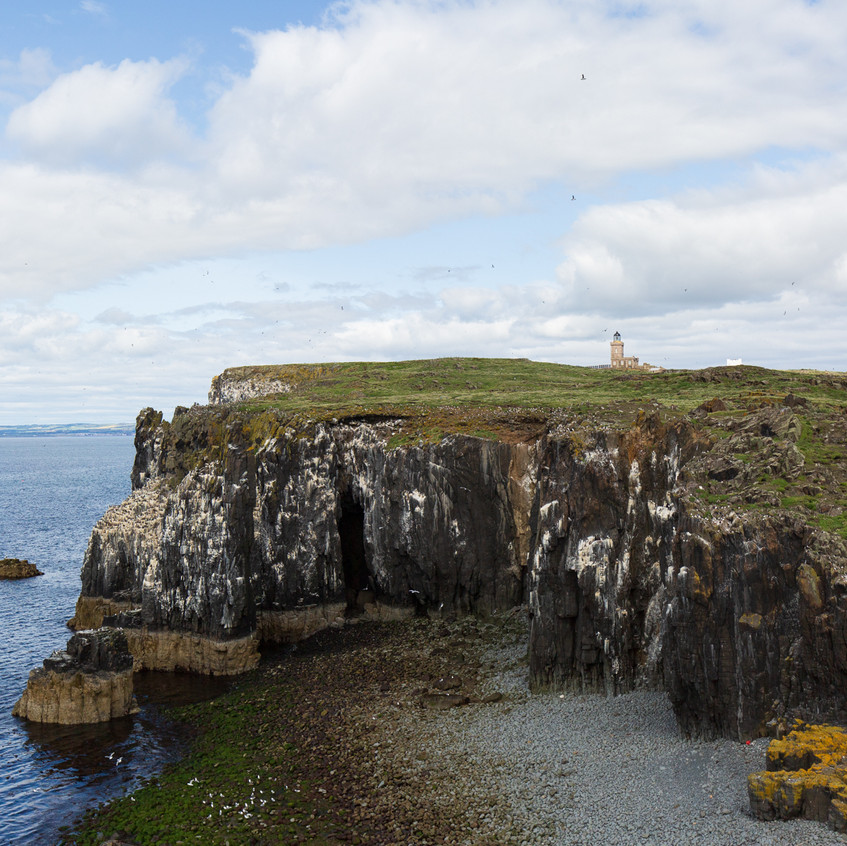 Isle of May cliffs