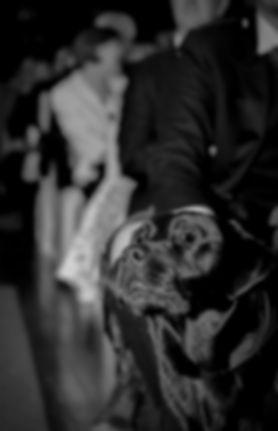 Groom getting assistance Kate Stevenson Photography