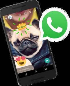 whatsapp broadcust funny