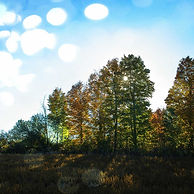 _DSC9462_Bubble_edited.jpg