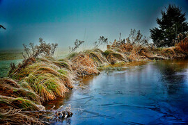 Pond-6760.jpg