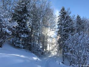 Skitour Talegg