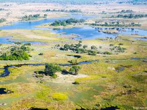 Okavango aus der Luft
