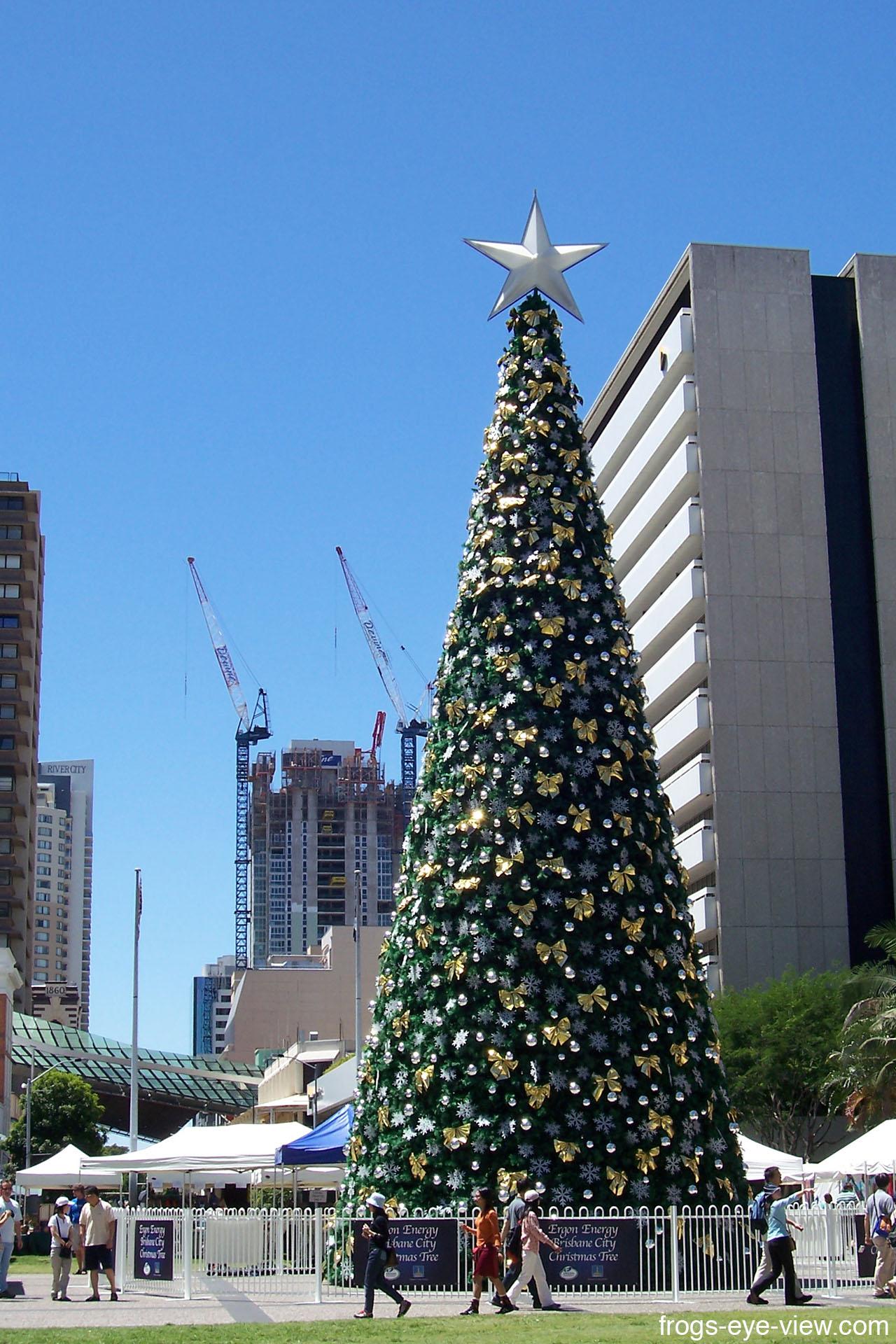 05_Christmas tree Kopie
