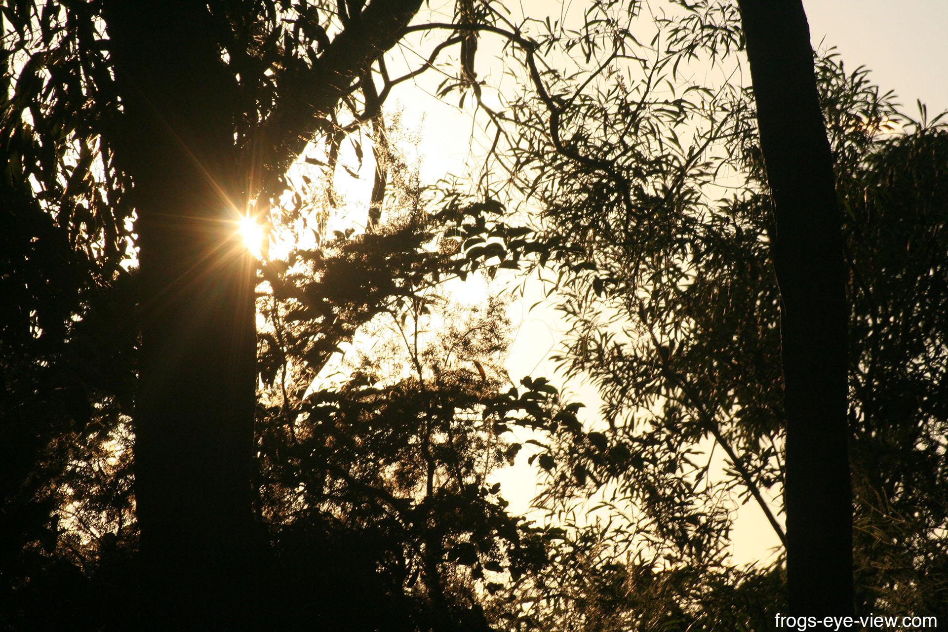 02_Sunrise Kopie