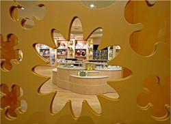 Credit Valley Hospital, Hospital Gift Shop, Custom Doors, Store Design, Lighting