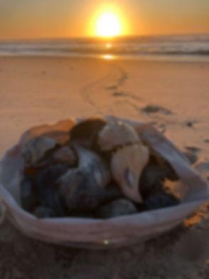 shell bag.JPG