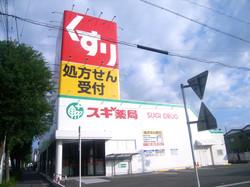 スギ薬局浜松住吉店