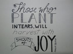 Those who Plant