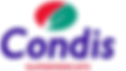 logo-condisweb.png