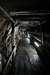 tunel1.jpg