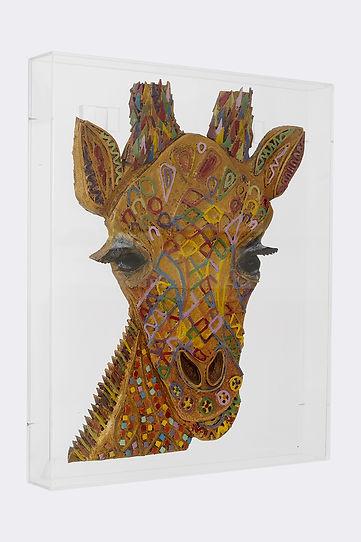 giraffa2.jpg
