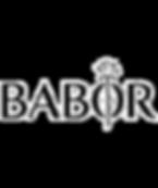 Babor%20logo_edited.png