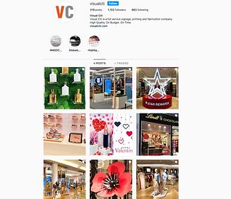 VisualCiti Instagram.png