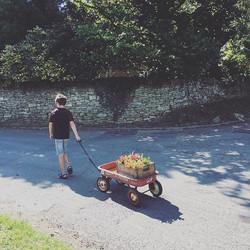 Flower deliver today! #radioflyer #flowers #delivery #workinghard #florist #kids #helping #ecofriend