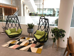 Reception Office Plants