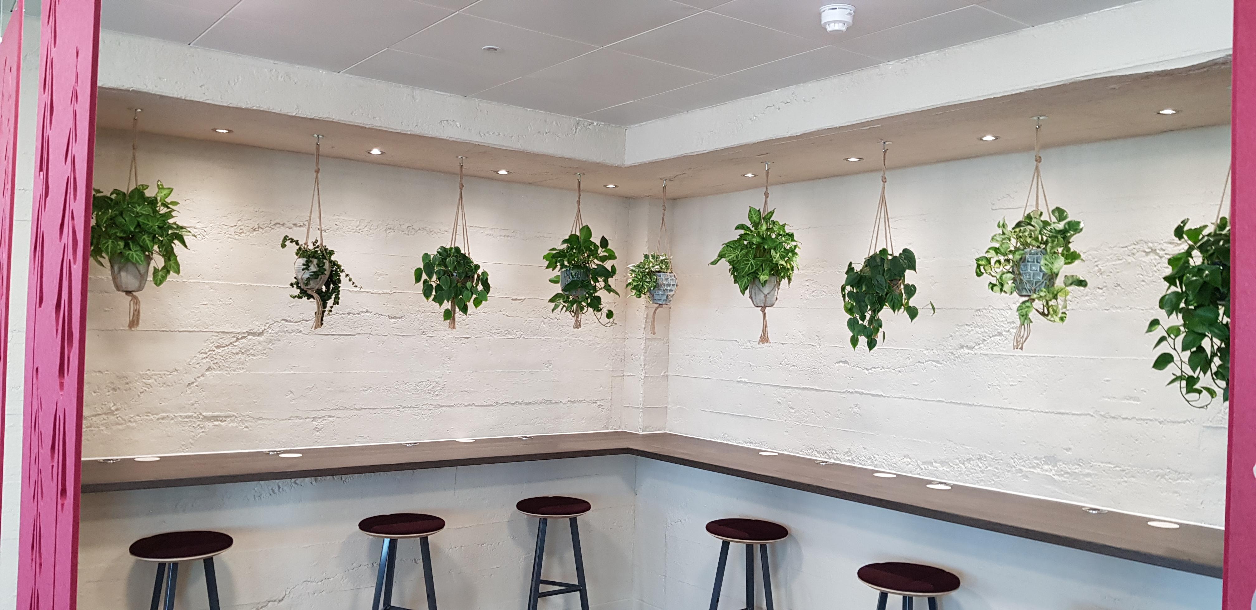 Slough Hanging Displays
