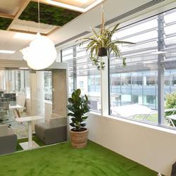 Uxbridge Office Plants