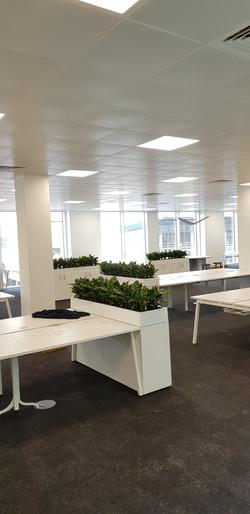 Large Desk Troughs