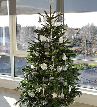 Office Christmas Tree.jpg