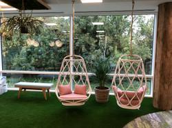 Uxbridge Plant Display