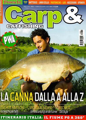 carp-catfishing-juin.jpg