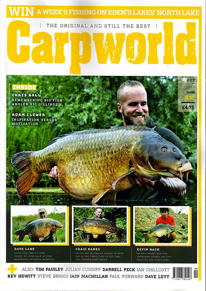 carpworld-oct.jpg