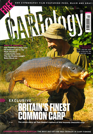 carpology-oct.jpg