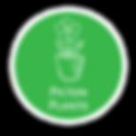 Picton-Plants-Logo.png