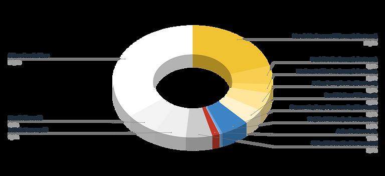 Struktura akcjonariatu_2021.07.21.png