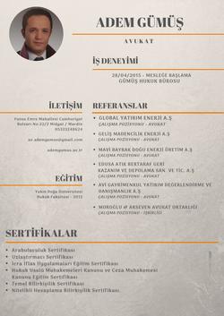 Adem Gümüş CV