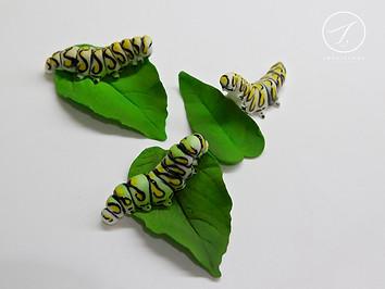 Very Hungry Caterpillars