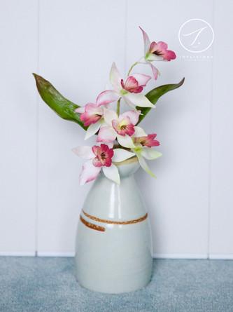 Sugar Dancing Orchids