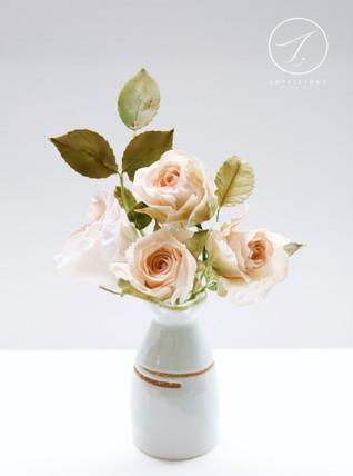 Sugar Peachy Garden Roses