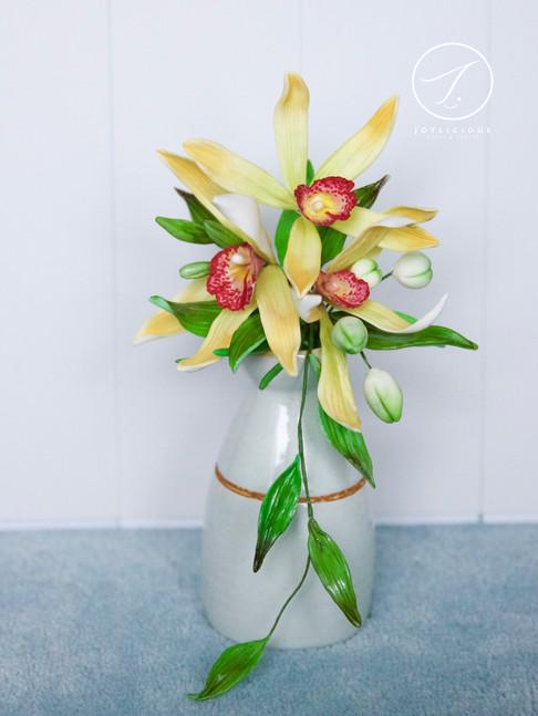 Sugar Vanilla Orchid