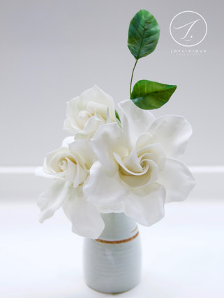 Sugar Gardenia