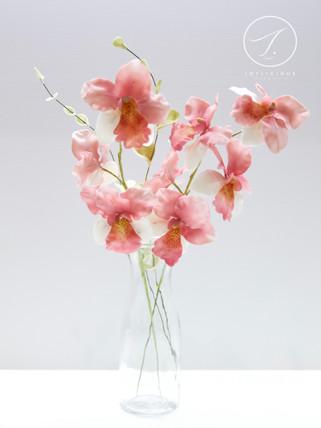 Sugar Vintage Orchids