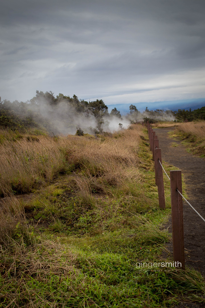 steam vents | kilauea