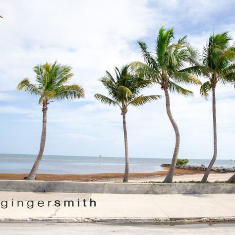 palm keys (triptych 1/3), Key West, 2019