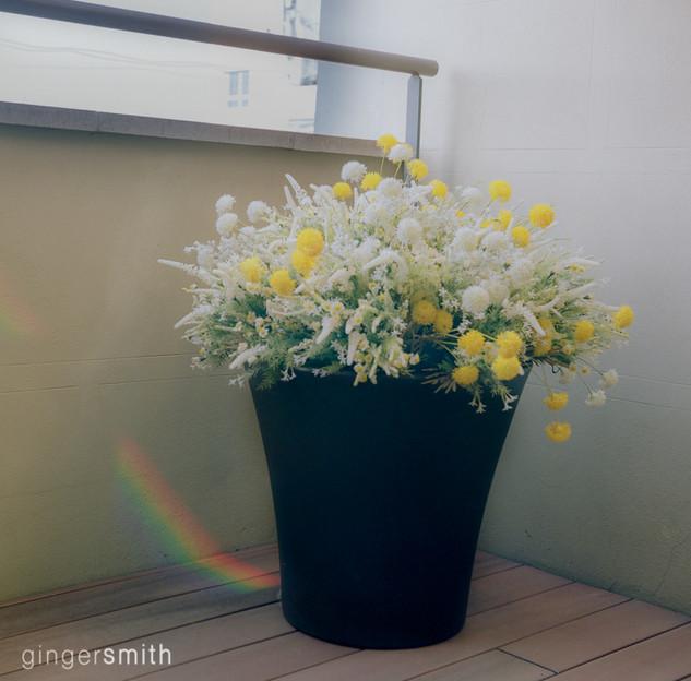 untitled 8 (rainbow meditation, Madrid), 2019
