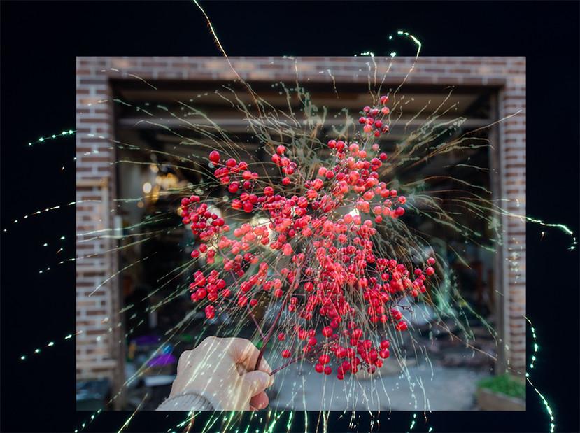 berries | 2021