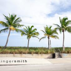 palm keys (triptych 3/3), Key West, 2019