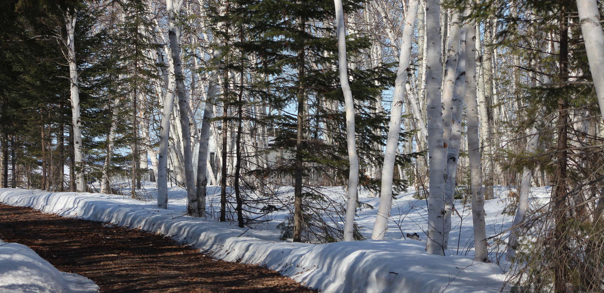 L'hiver au Chalet Doremi (11).JPG