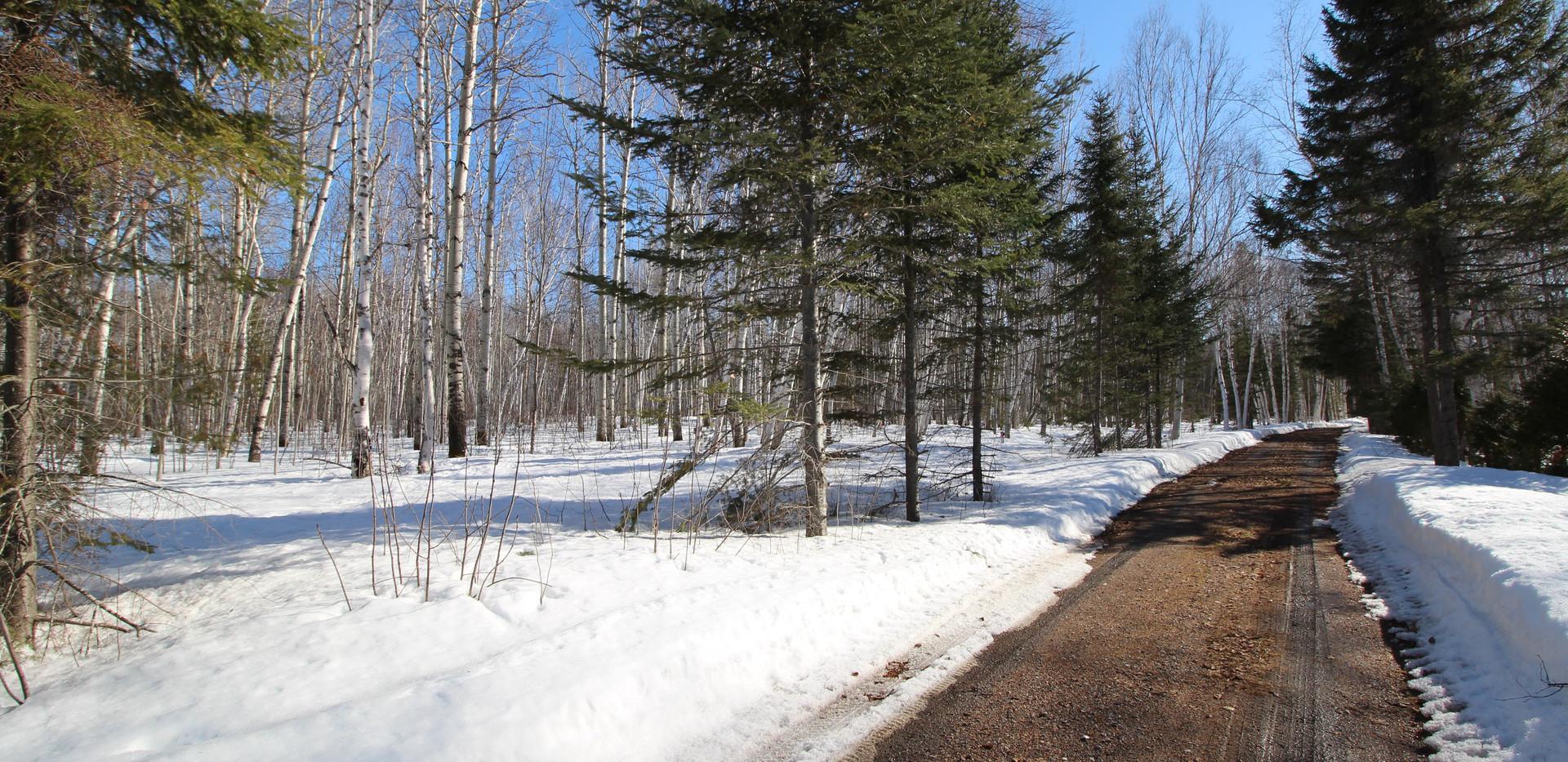 L'hiver au Chalet Doremi (9).JPG