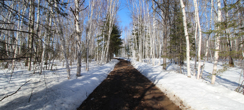 L'hiver au Chalet Doremi (2).JPG