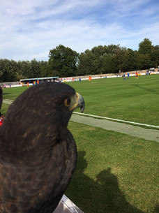 Cleo at Bury Town FC