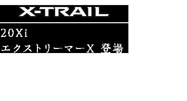 その他 文字 エクストレイル2020.png