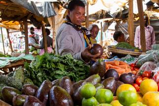 Ending hunger in Sub-Saharan Africa