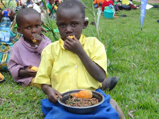 Embedding Nutrition in Agriculture Programs