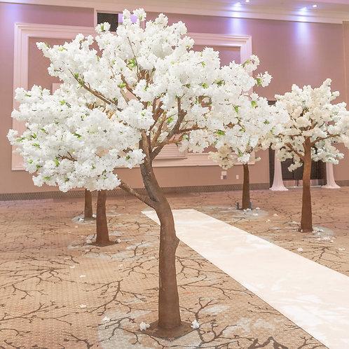 Cherry Blossom Tree - 8ft